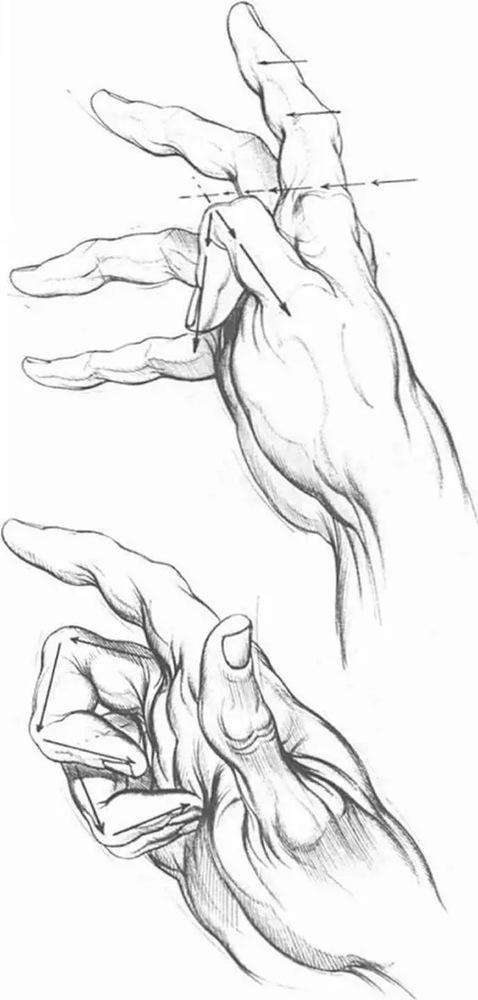 关于素描结构关系的理解,广州画室希望你记住这几点!
