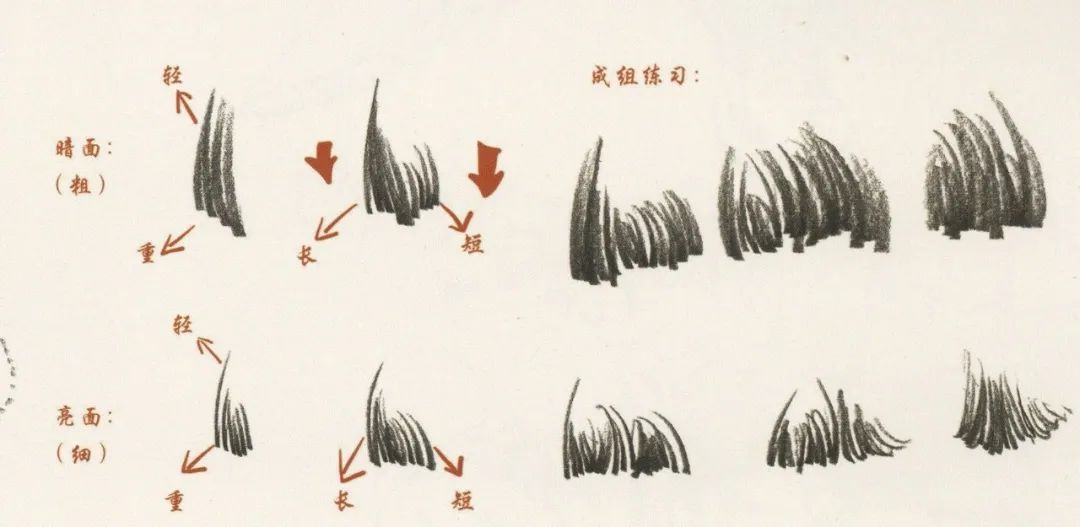 广州画室排名前五画室干货丨速写头发如何画,这份步骤大概最完整,02