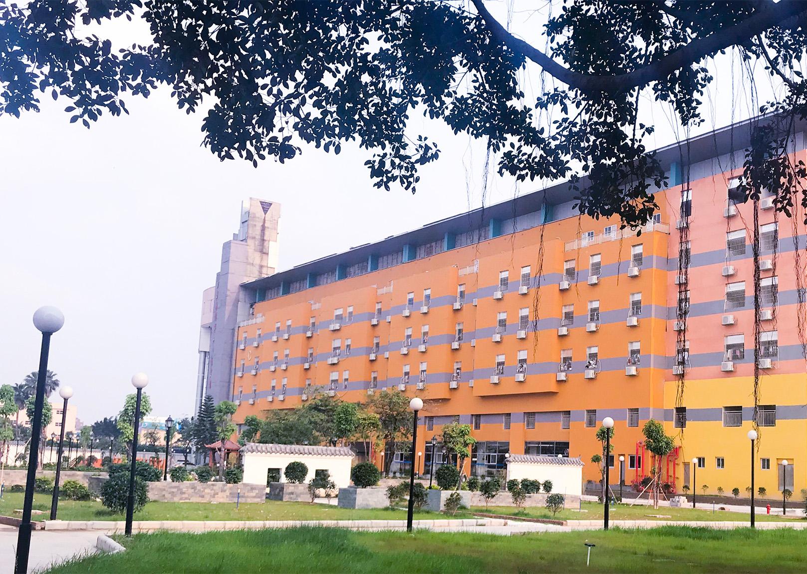 广州画室校园,广州美术培训班校园,广州围墙画室校园